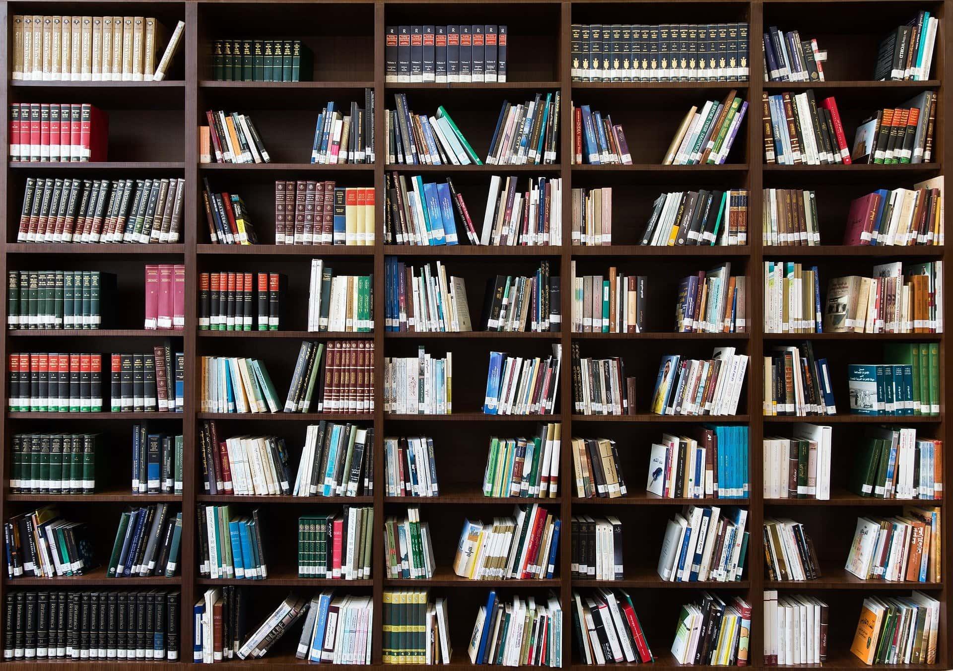 Biblioteca Ruy Carlos Ostermann #25 – os livros de Samory Uiki