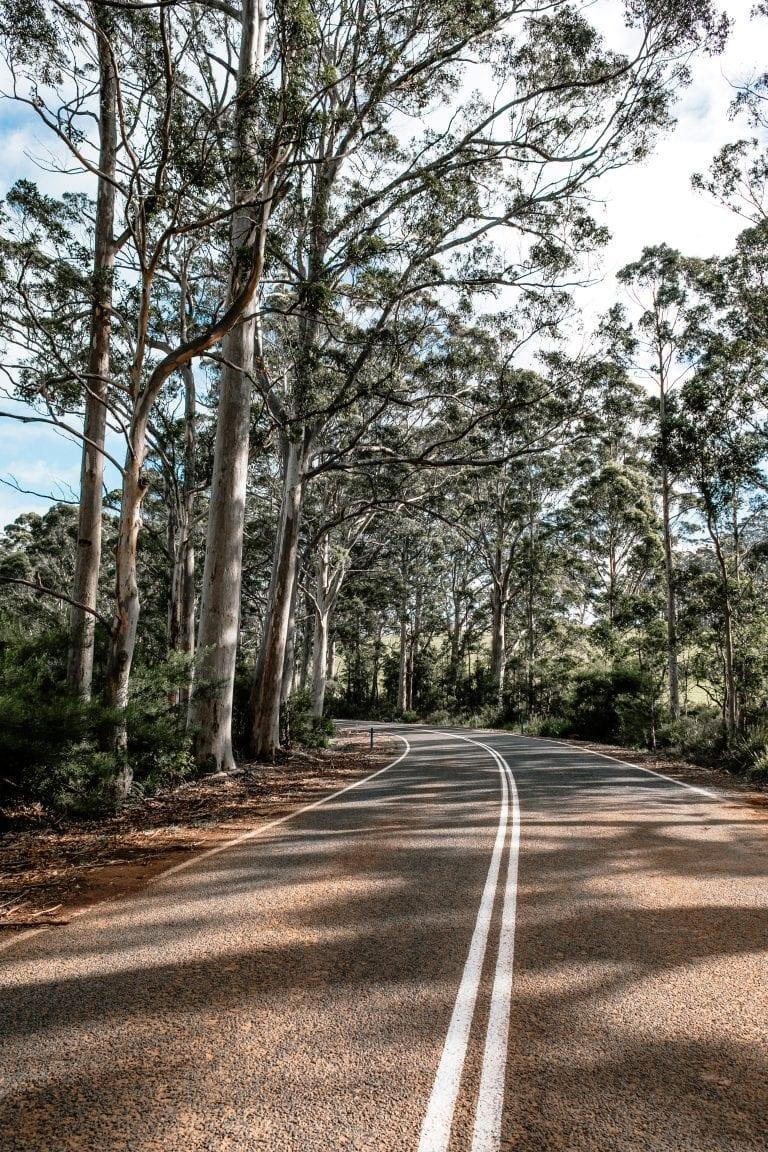 caminho pela estrada