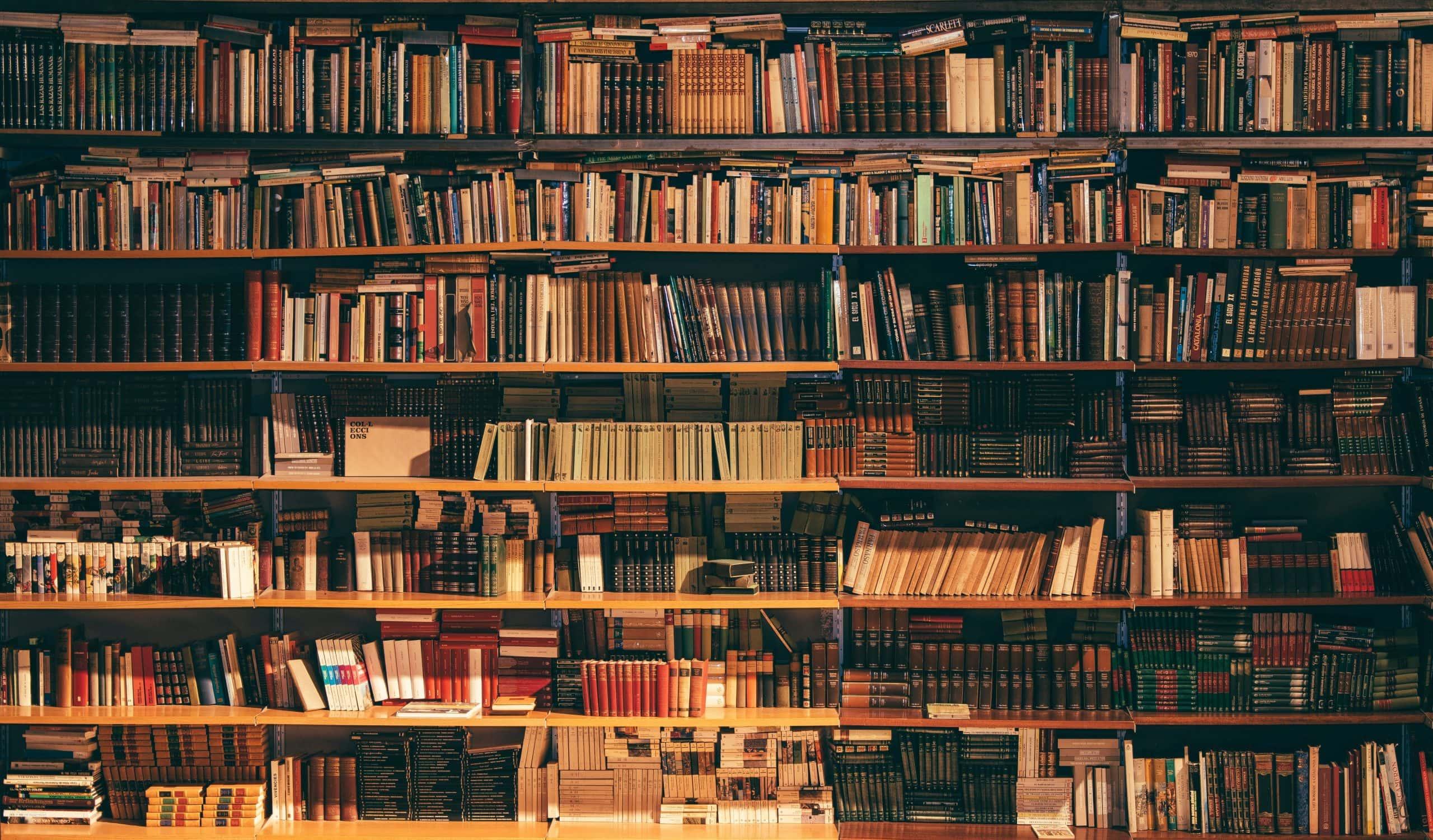 Biblioteca Ruy Carlos Ostermann #22 – os livros das nossas parceiras